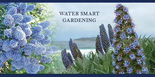 Water Wise Gardening in Orange County
