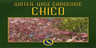 Chico Water Wise Gardening