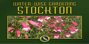 Stockton Water Wise Gardening