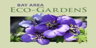 Water Wise Gardening in Santa Clara County