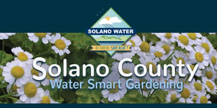 Water Wise Gardening in Solano County